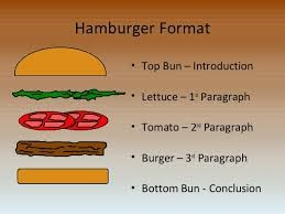 Mill springs academy newsletter we are writing expository essays 5 paragraphs we are using the hamburger format ccuart Choice Image